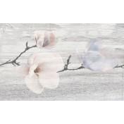 Pastel Magnolia